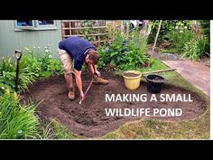 Making a Small Wildlife Pond - YouTube Garden Pond Design, Bog Garden, Ponds For Small Gardens, Small Ponds, Backyard Water Feature, Ponds Backyard, Small Garden Wildlife Pond, Small Pond Fountains, Pond Water Features