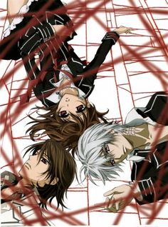 vampire knight - i've started watching this one and it's really good!!