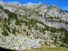 Alpe Gradisc, im Val Calnegia Switzerland, Hiking, Mountains, Nature, Travel, Walks, Naturaleza, Viajes, Trips