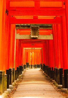 Red Gates at Kyoto by hero2013  on 500px