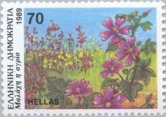 Malva sylvestris (common mallow) (Greek Flora and Fauna) . Greek Flowers, Forest Mountain, Flower Stamp, Tree Forest, Flora And Fauna, Flowering Trees, Science And Nature, Postage Stamps, Greece
