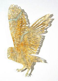 Owls an birds. Utensils from maps atlases