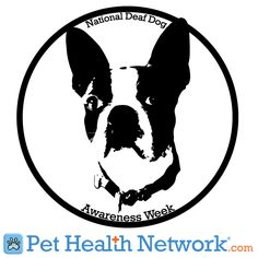 #National #Deaf #Dog Awareness Week September 23 - 28. Right when Zoe's bday is!