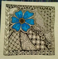 flower series 12/14 Julie Beland