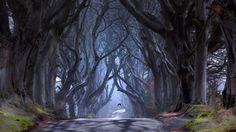 Скачать обои северная ирландия, графство антрим, раздел природа в разрешении 1366x768