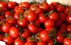 Grow Organic Tomatoes The 7 Deadly Sins of Tomato-Growing Growing Tomato Plants, Tips For Growing Tomatoes, Growing Tomatoes In Containers, Grow Tomatoes, Dried Tomatoes, Baby Tomatoes, Cherry Tomatoes, Fresh Fruits And Vegetables, Organic Vegetables
