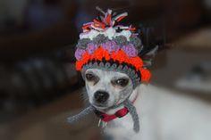Crochet Pattern Bobble Stitch Dog Hat by poshpoochdesigns on Etsy, $3.99