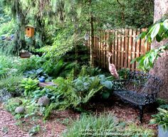 Garden Musings at Our Fairfield Home and Garden