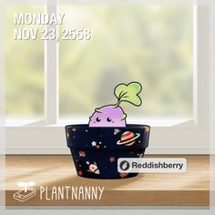 Say hello to my plant! It has absorbed 207 oz of water. Get yourself a plant at http://fourdesire.com/outer_link?url=http://itunes.apple.com/app/id590216134&l=en_TH&m=56524E29