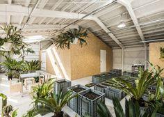 Schemata Architects converts Tokyo factory into artist's studio with an indoor garden