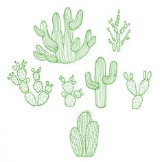 Cacti Illustrations - Lime Green