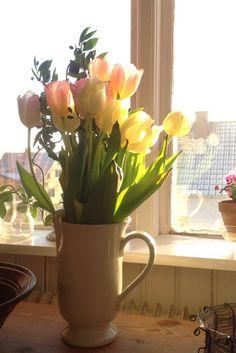 Inreda med blommor