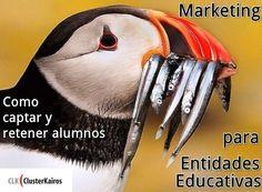 Marketing Entidades Educativas