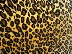 My next tattoo!  Leopard print!