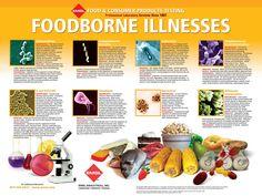 food borne illness printable poster for the classroom