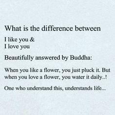 Quoting Buddha.
