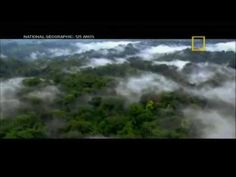O Universo - A Terra Vista do Espaço Dublado HD -  /  The Universe - The Earth Dubbed HD Space View -