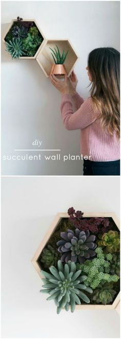 5 Beautiful Accent Wall Ideas To Spruce Up Your Home: 46 Best Indoor Wall Planters Images