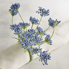 Pier 1 Imports Queen Anne Flower Napkin Ring ($2.95) ❤ liked on Polyvore featuring home, kitchen & dining, napkin rings, blue, pier 1 imports, flower stem, blue napkin rings and flower napkin rings
