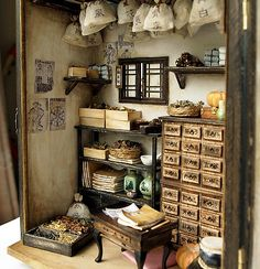 Traditional oriental Herbal Medicine Shop handmade by DollhouseAra Miniature Rooms, Miniature Crafts, Miniature Houses, Dolls House Shop, Doll Houses, Mini Things, Handmade Shop, Handmade Dolls, Book Nooks