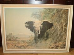 VERY LARGE Vintage AFRICAN ELEPHANT FRAMED PRINT ON BOARD  by COULSON