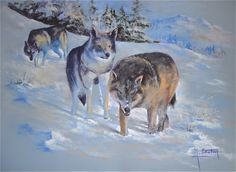 Pastels, Panther, Moose Art, Blog, Facebook, Painting, Amigos, Animaux, Painting Art