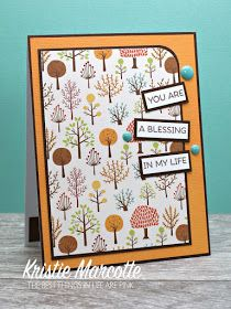 It's still November, so I couldn't resist turning one more fall paper pad into cards. I decided if I use up all the fall collections I . Cute Cards, Diy Cards, Your Cards, Paper Smooches, We R Memory Keepers, Echo Park, Fall Cards, American Crafts, Card Sketches