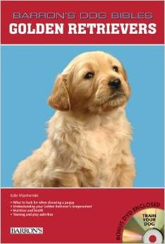 Now you can also own a golden retriever, the most well mannered and gentle dog. Golden Retriever focused Barron's series of Dog Bible will help you in taking care of your dog.