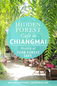 Fern Forest Cafe Hidden Forest Cafe in Chiangmai Thialand