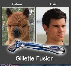 Funny Twilight Taylor Lautner Jacon Black Before After Joke Picture - Gillette Fusion Advert Edward E Bella, Funny Photos, Funny Images, Hilarious Pictures, Funny Videos, Funniest Photos, Funniest Things, Funny Things, Gillette Fusion