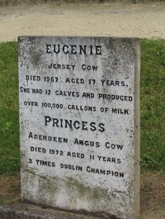 Fun With Gravestones And Tombstone Sayings Kill Your Friends And