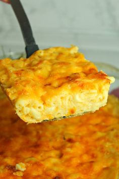Baked Macaroni and Cheese with Ground Beef Recipes Southern Macaroni And Cheese, Best Macaroni And Cheese, Macaroni Cheese Recipes, Mac And Cheese Homemade, Macaroni Pie, Southern Baked Mac And Cheese Recipe, Mac And Cheese Pie, Macaroni Salad, Mac And Cheese Recipe Soul Food