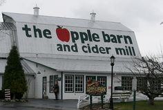 things I love, aaah, the apple barn. I wish I was there now! fritters, cider, apple butter, fried pies, etc.
