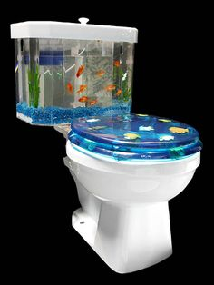 Toilet Aquarium - I'd be tempted to sit on the seat backwards to enjoy the fish!!