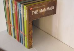 <p>If you don't have a book thick enough to store what you want, you can put together this fun book storage compartment that involves hiding things behind books rather than in them.<br /></p><p><br /></p>