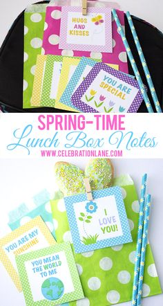 Spring Lunch Box Not