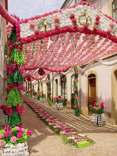 Portugal.  oh my!  Beautiful, and think of all the work it took to decorate this street.