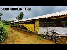 Poultry Farm Construction Cost and Design Poultry House, Farm Projects, Construction Cost, Chicken Runs, Beach Villa, Chickens Backyard, Farm Life, Farmer, Shed