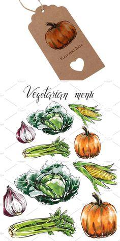 Vegetable Drawing, Vegetable Design, Vegetarian Menu, Chinese Cabbage, Fresh Vegetables, Line Art, Pumpkin, Organic, Healthy Recipes