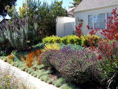 Nice textured plantings, low maintenance garden beds :)
