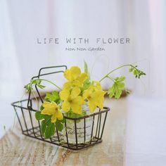 花を飾る | Non Non Days!
