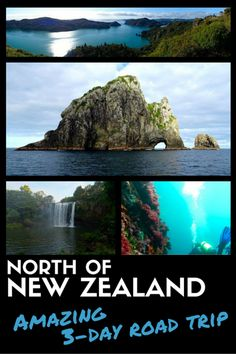 Long weekend roadtrip to the North West of New-Zealand: Bay of Islands, Poor Knights Islands and Whangaroa Harbour in 3 days, from and back to Auckland. Usa Roadtrip, Roadtrip Europa, Oh The Places You'll Go, Places To Visit, North Island New Zealand, Bay Of Islands, Road Trip Hacks, New Zealand Travel, Le Far West