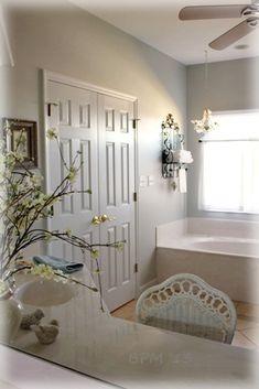1000 images about bath paint colors on pinterest sherwin williams sea salt indianapolis home. Black Bedroom Furniture Sets. Home Design Ideas