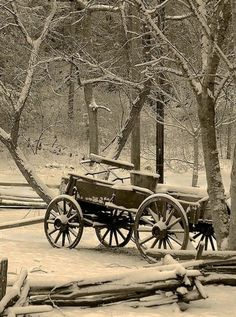 Sepia Wagon Picture In Winter Time of Wagon