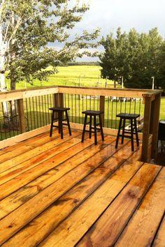Rebar deck railing!