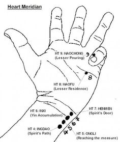 The heart meridian starts in the left hand.=Heart Attacks Are Not Sudden Onset. Acupressure Massage, Acupressure Treatment, Reflexology Massage, Acupuncture Points, Acupressure Points, Technique Massage, Tai Chi Chuan, Cardiovascular Health, Alternative Therapies
