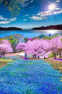Sun Background, Hello Spring, Soft Colors, Beautiful Landscapes, Golf Courses, Heaven, Nature, Beauty, Easter