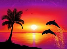 Pix For > Easy Paintings Of Dolphins