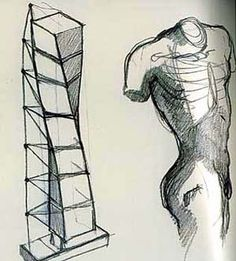 Calatrava sketch comparing his building design (left) with the human form (right).