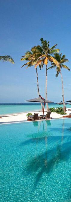 海海海のボルディブ|Relaxation Life -リラクゼーションライフ-